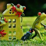 Wybór przy zakupie nieruchomości